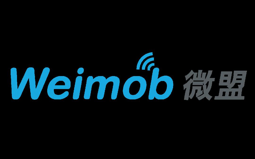 Assemblea degli Azionisti Weimob